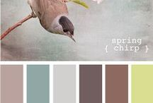 Home Color Schemes / by Courtney Wells
