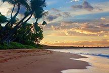 Travel Destination: Tropical