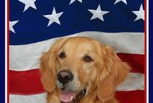 Patriotic Pets / Dogs Supporting the USA!
