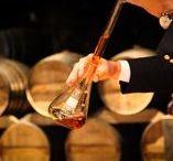 Charente - France / Découverte du terroir Charentais côté gastronomie, vins et spiritueux.
