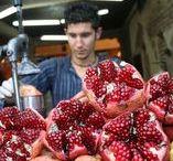Israel / Gastronomie et tourisme en Israel