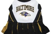 Baltimore Ravens Dogs / Baltimore Ravens Dog Collar: Clothes, Apparel, Lead & ID Tags - Hot Dog Collars