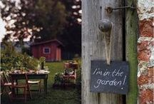 "Garden & backyard / ""If you have a garden and a library, you have everything you need."" - Marcus Tullius Cicero"