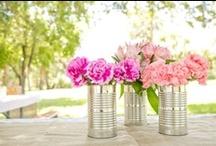 Gardening/ Flowers / by Eve Weinstein