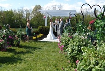 Spring Weddings / Spring weddings, inspirations and ideas.