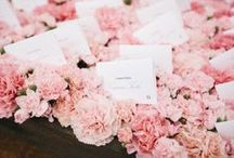 Escort Cards/ Seating Chart / by Eve Weinstein