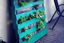 Pallet Gardens at Stacy K Floral / Pallet Gardens created by Stacy K Floral