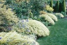 Beautiful Gardens and  Spaces / by Ily Marie