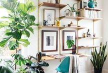 Home decor and design / by Dunja Dejanovic