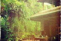BaliOHBali.net - Villa for Longterm / The Junglehouse in Kerobokan Bali is up for longterm lease up to 25 years