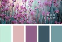 ∴ Palette