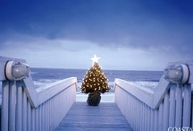 COASTAL XMAS  / IDEAS for Christmas Coastal decor / by Traudy Chinneck