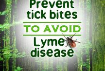 Lymey / Lyme disease awareness and treatments