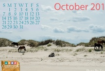 Calendar & Desktop Wallpaper / Each month, VisitCurrituck.com shares a gorgeous calendar wallpaper image to save to your desktop. Check out past months and download our current month. / by Currituck OBX