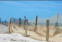 Currituck Outer Banks / The Currituck (Outer Banks) is rich with heritage. Check out the Currituck farm markets, vineyards, golf courses, and beautiful beaches! Enjoy your family vacation in Currituck, OBX!