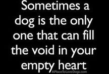 Dog Quotes / by A Place To Love Dogs