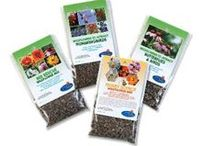 BBB Seed Wildflower Mixes
