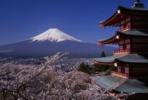 Japan / by Teresa West