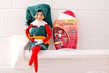 Elf On The Shelf Fun / Elf On The Shelf ideas and inspiration for your holiday shenanigans / by Chrissy {The Taylor House}