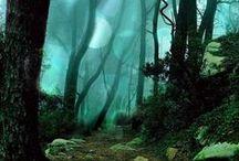 enchanted : world / by erin laturner