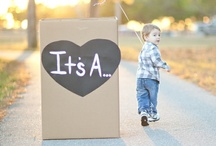 gender reveal party! / by Shasheila Johnston