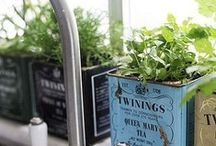 gardening&things.