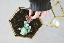 Crafty / things to make / by Jessica Mills