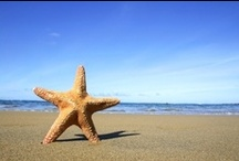 Sun, sea. sand