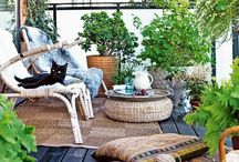 Oslo | Green / Living with plants - indoors and outdoors