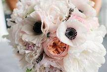Flowers / Wedding flowers & bouquets