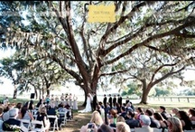 Venues. / by Puff 'n Stuff Catering