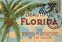 To Do in FL / The things to do in Florida