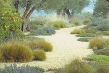 Greens Landscape