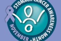 Stomach Cancer Awareness / No Stomach For Cancer is actively involved in raising awareness around the world and provides information about stomach cancer to patients, families, and caregivers.