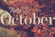 falling for autumn / autumn time
