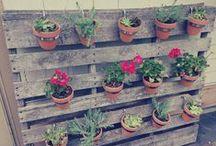 To Garden