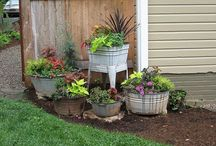 landscaping ideas!! / by Shana Horseman