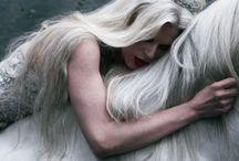 F A I R Y  D U S T / Magic   Mystery   Romance   Fairy Dust   Fairy Tales