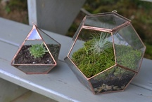 Garden/Green Ideas / Green spaces, nature, plants and other things / by Neoturf Espaços Verdes