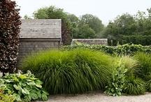 Min Hage / my garden inspiration. / by Emily A