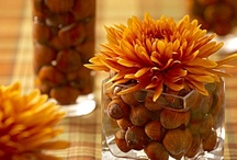 Thanksgiving Inspiration  / by Stacey Martin