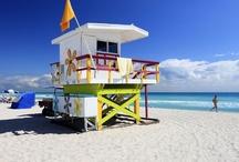 United States of America / Estados Unidos / Experience the cultured surroundings of RIU's perfectly positioned Florida hotel, set along the coast of South Beach, Miami. // Dentro de Estados Unidos, Miami  es una de las ciudades más interesantes.