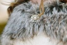For the Bride  |  Jewelry + Accessories / Beautiful Jewels and Accessories for the Bride and Bridesmaids