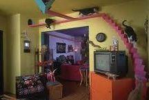 Posh Pet Rooms