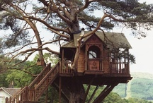 Cottages* Forests*Treehouses / by Jill Francis