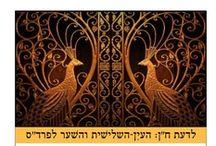 Ornament | עיטורים  / https://www.facebook.com/Ayelet.Chen.Holistic.Medicine / by Ayelet Chen אילת חן