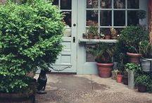 Rooftop Garden / by Becca Riegelhaupt