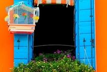 Windows, Shutters, Balconies... / by Maitri Libellule