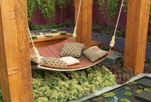 Yard Design / by Mica Knibbs