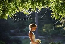 Bridal/Wedding / by Taylor Parker